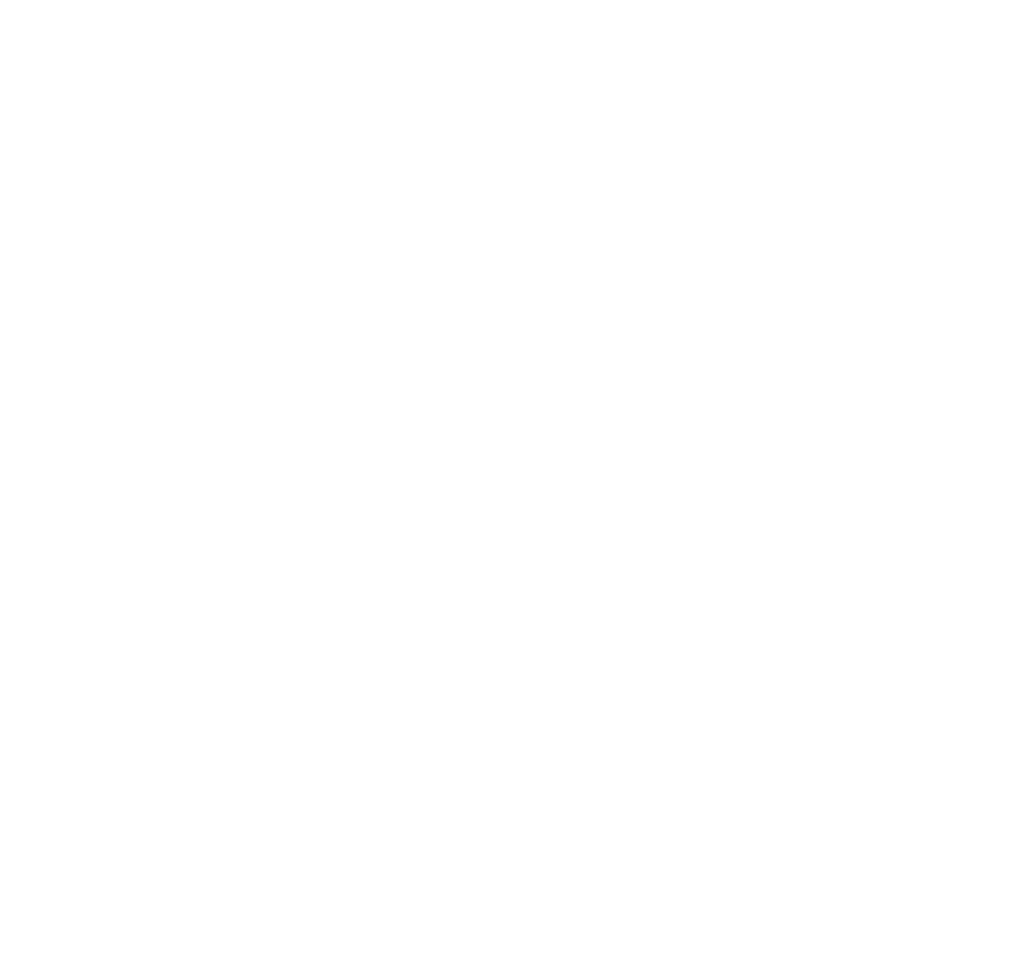 Dragonfly Expeditions